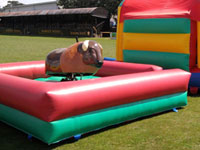 12ft x 11ft x 9ft Buffalo Billy - Childs Rodeo Bull / Bucking Bronco �150 2hours free set of kids sumo suits