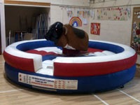 Rodeo Bull Bucking Bronco �175 2hours �25 per an hour after
