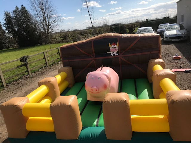 percy pig kids rodeo bull